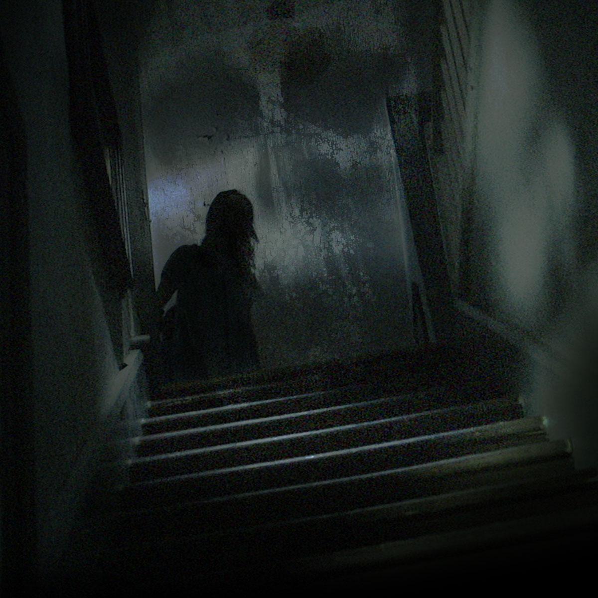 paranormal witness stream deutsch