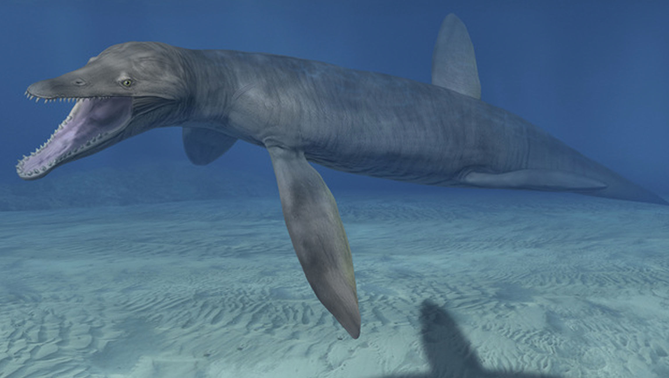 Nessie's got nothing on this newly unearthed, razor-toothed sea monster