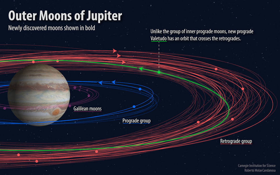 Orbits of twelve new moons found for Jupiter (not to scale). Some orbit the same way Jupiter spins (blue), and others the opposite way (red). Credit: Carnegie Institution for Science / Roberto Molar Candanosa