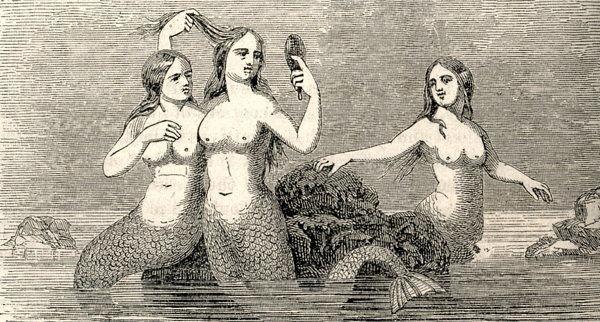 1842mermaids