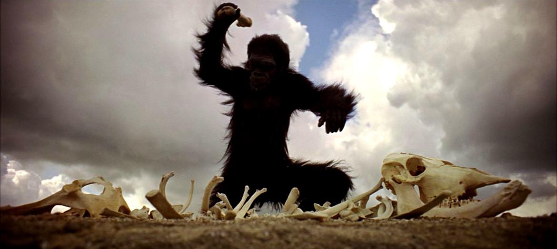 2001: A Space Odyssey, ape