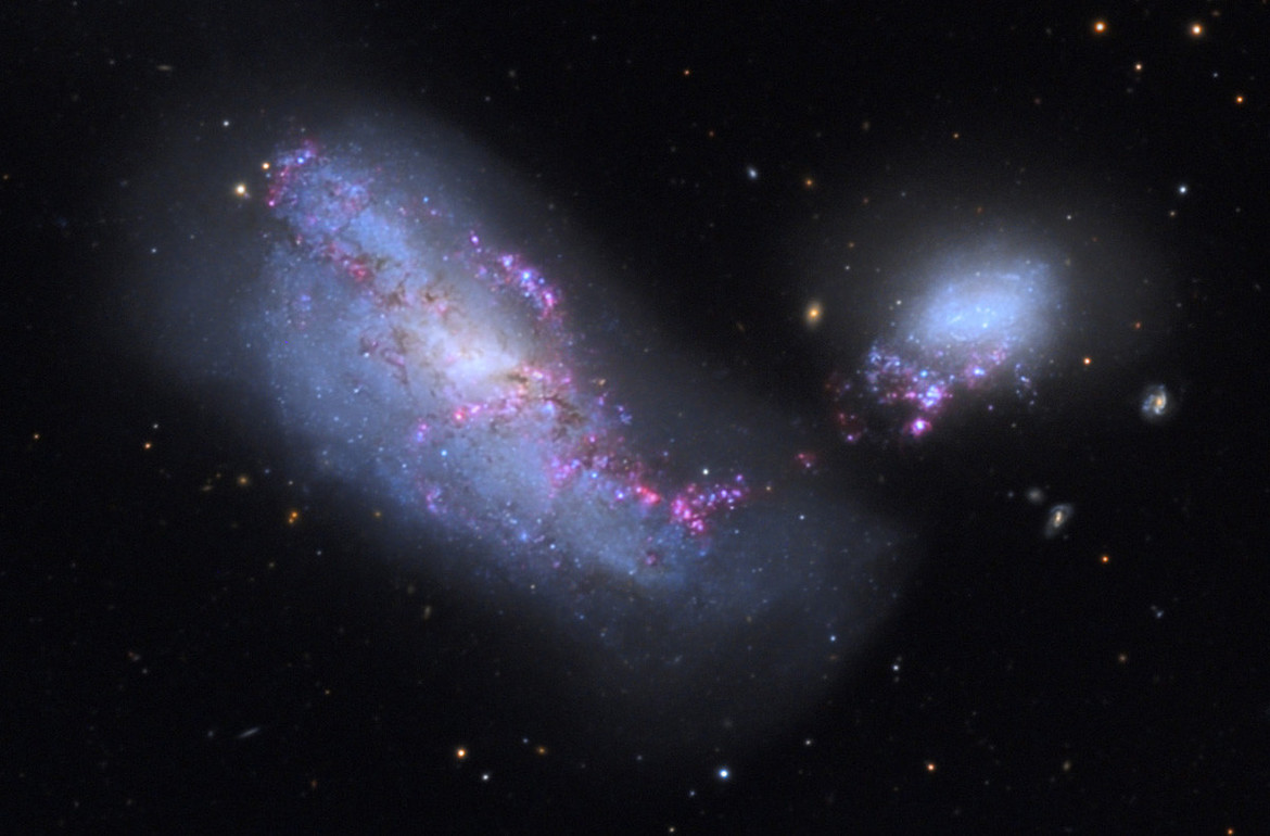 A wide view of NGC 4490 shows the interloping NGC 4485, a smaller irregular whose gravity distorted the bigger galaxy's shape. Credit: Michael Gariepy/Adam Block/NOAO/AURA/NSF
