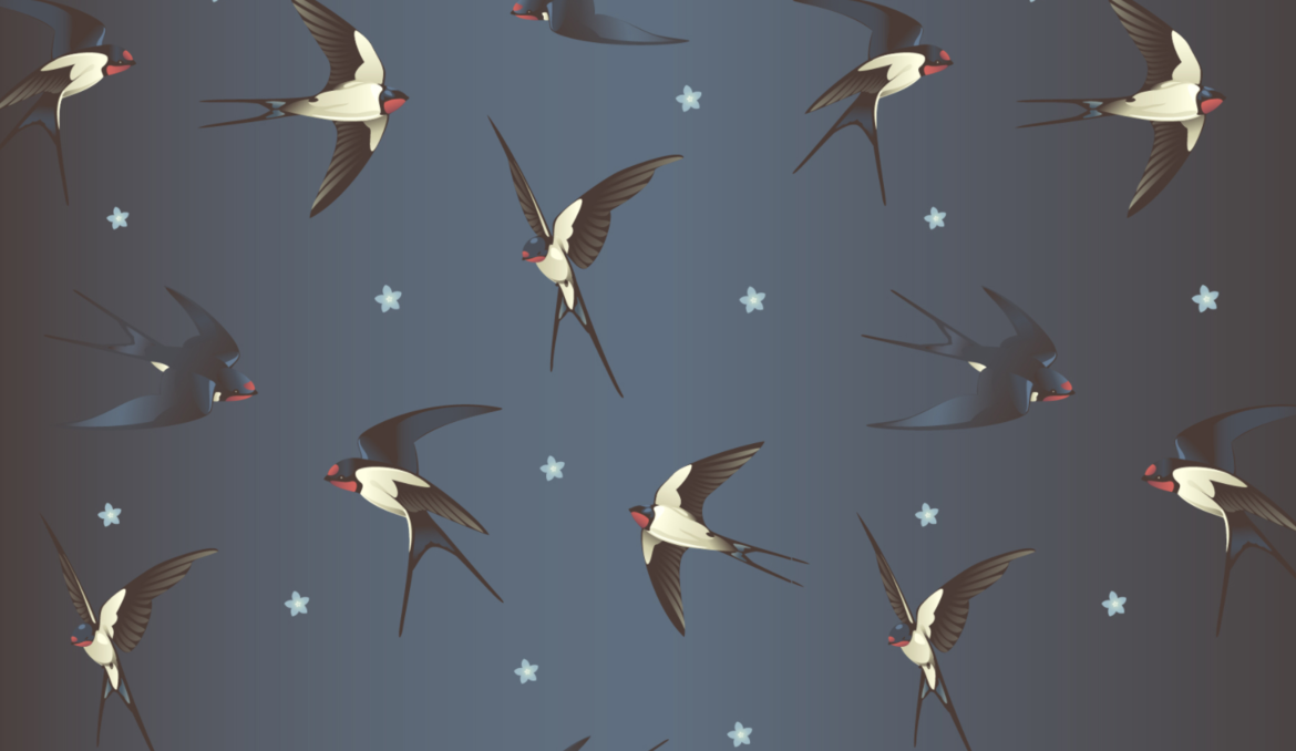 All The Birds Cover Slice