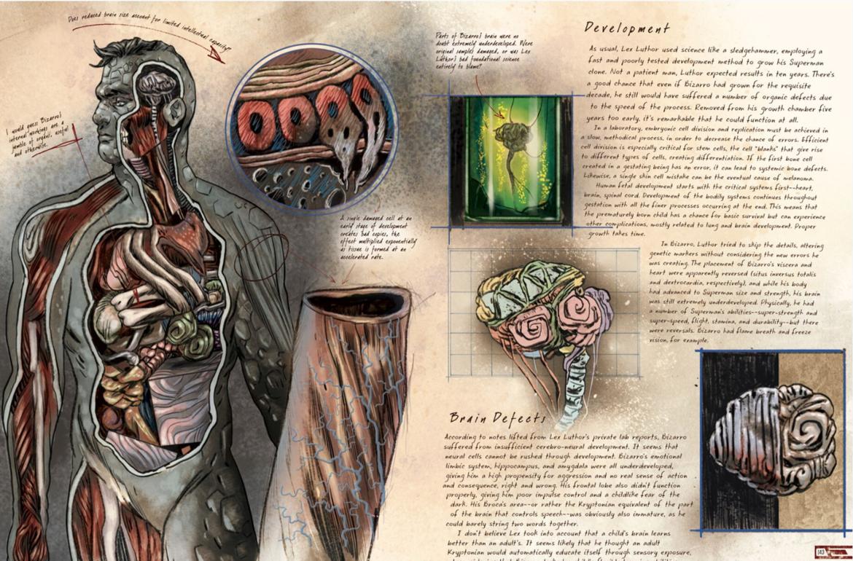 DC Comics Anatomy of a Metahuman, Bizarro