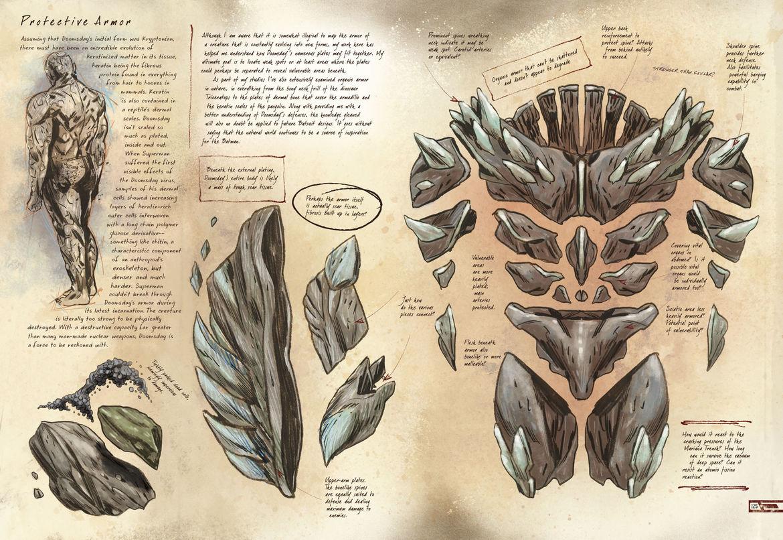 Anatomy 63