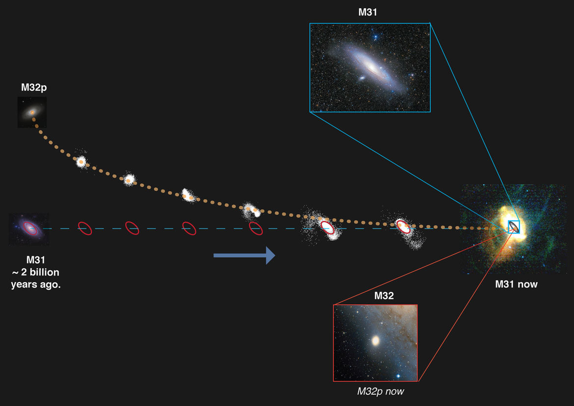 The proposed timeline for the collision of Andromeda (M31) and M32p, a large spiral galaxy. It started 2 billion years ago as the two approached, and ends up today with M32p strung out into loops of star streams around M31