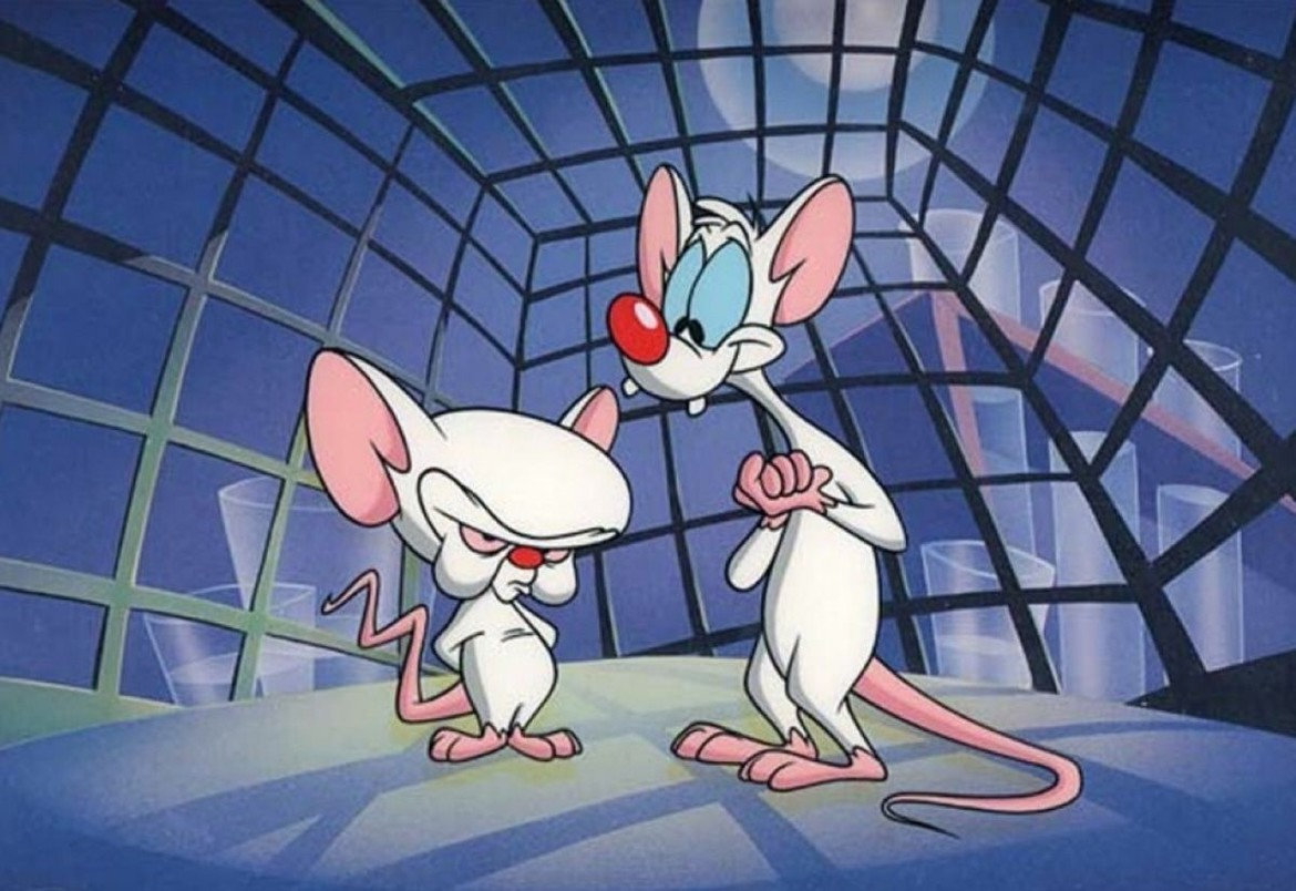 Animaniacs - Pinky and the Brain