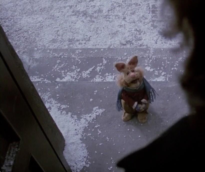bean_bunny.jpg
