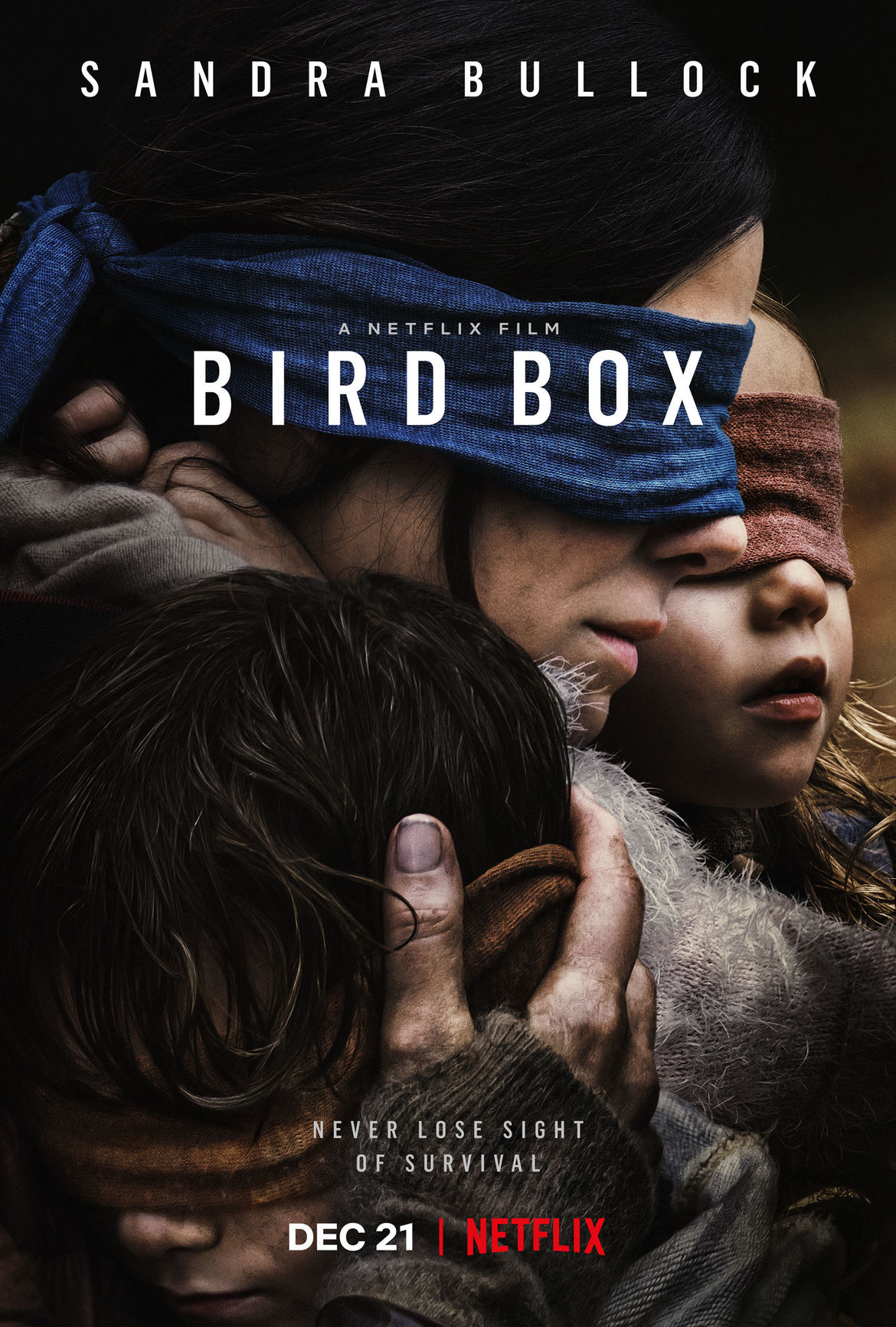 Bird Box Netflix movie poster