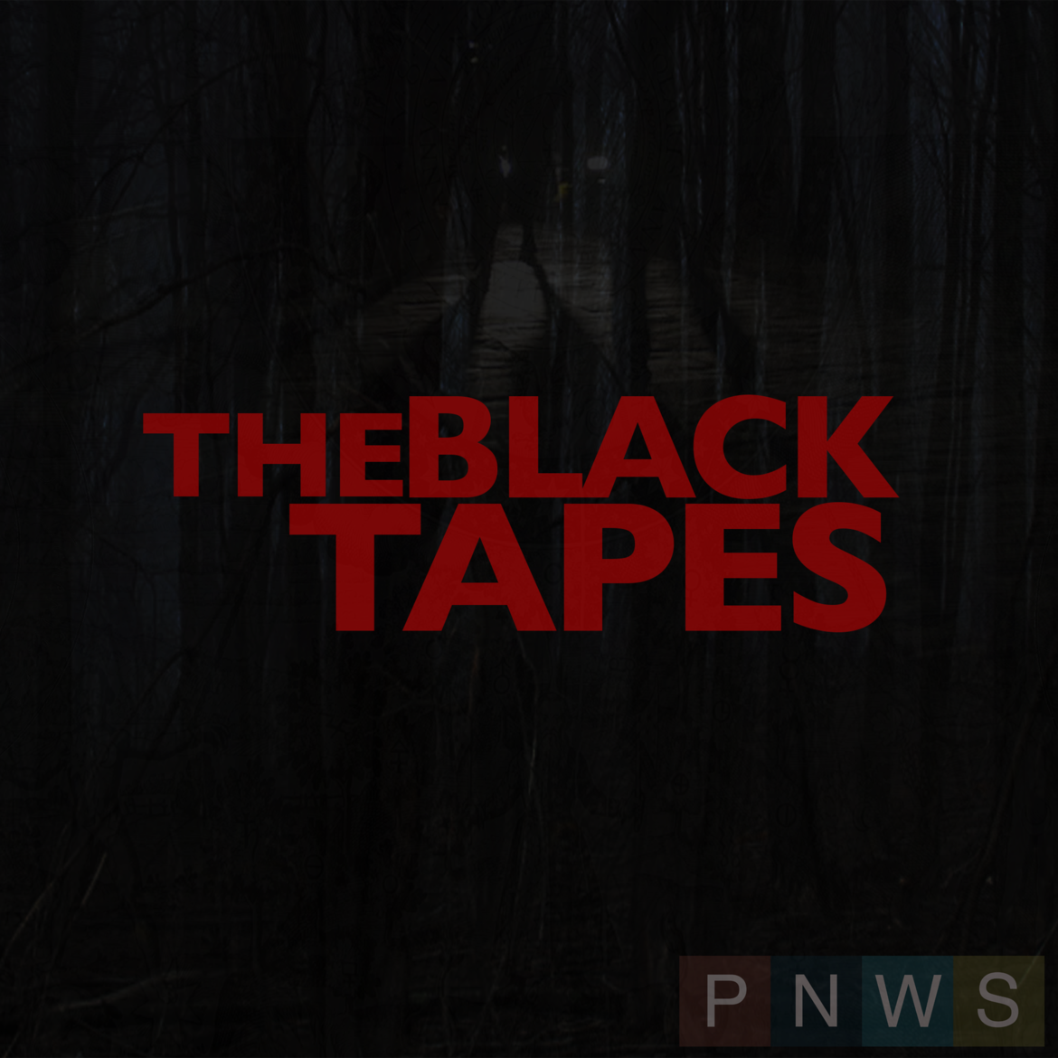 Black Tapes.png