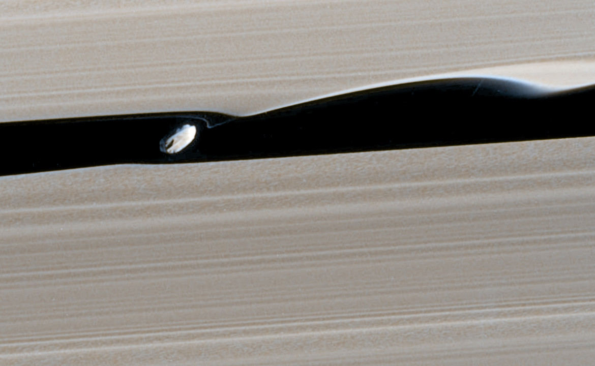Daphnis makes waves in Saturn's rings. Credit: NASA/JPL-Caltech/SSI