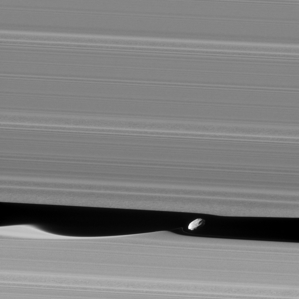 The wee moon Daphnis carves gorgeous patterns in Saturn's rings.