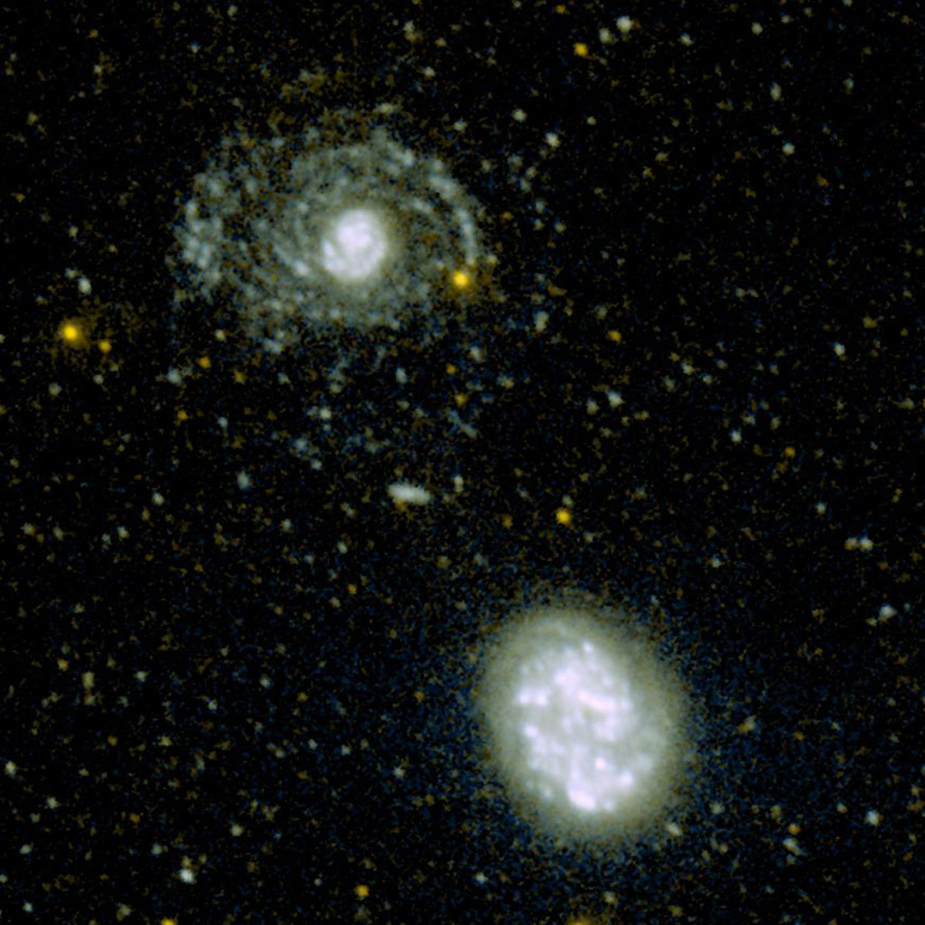 Ultraviolet image of NGC 4625 and 4618, taken with GALEX. Credit: NASA/JPL-Caltech