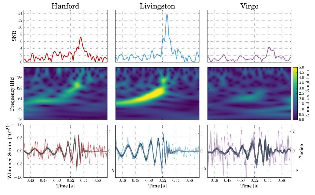 The black hole merger was felt by three detectors; two from LIGO (left and middle) and one from Virgo (right). Credit: LIGO/Caltech/MIT/LSC