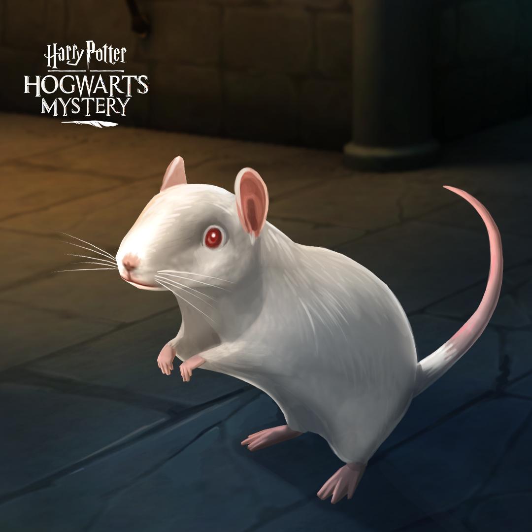 Harry Potter: Hogwarts Mystery rat