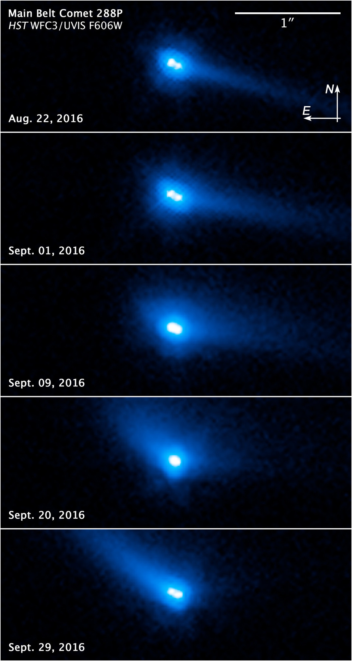 Images of the comet P/2006 VW139 using Hubble show it to be a binary pair of objects.Credit: NASA, ESA, and J. Agarwal (Max Planck Institute for Solar System Research)