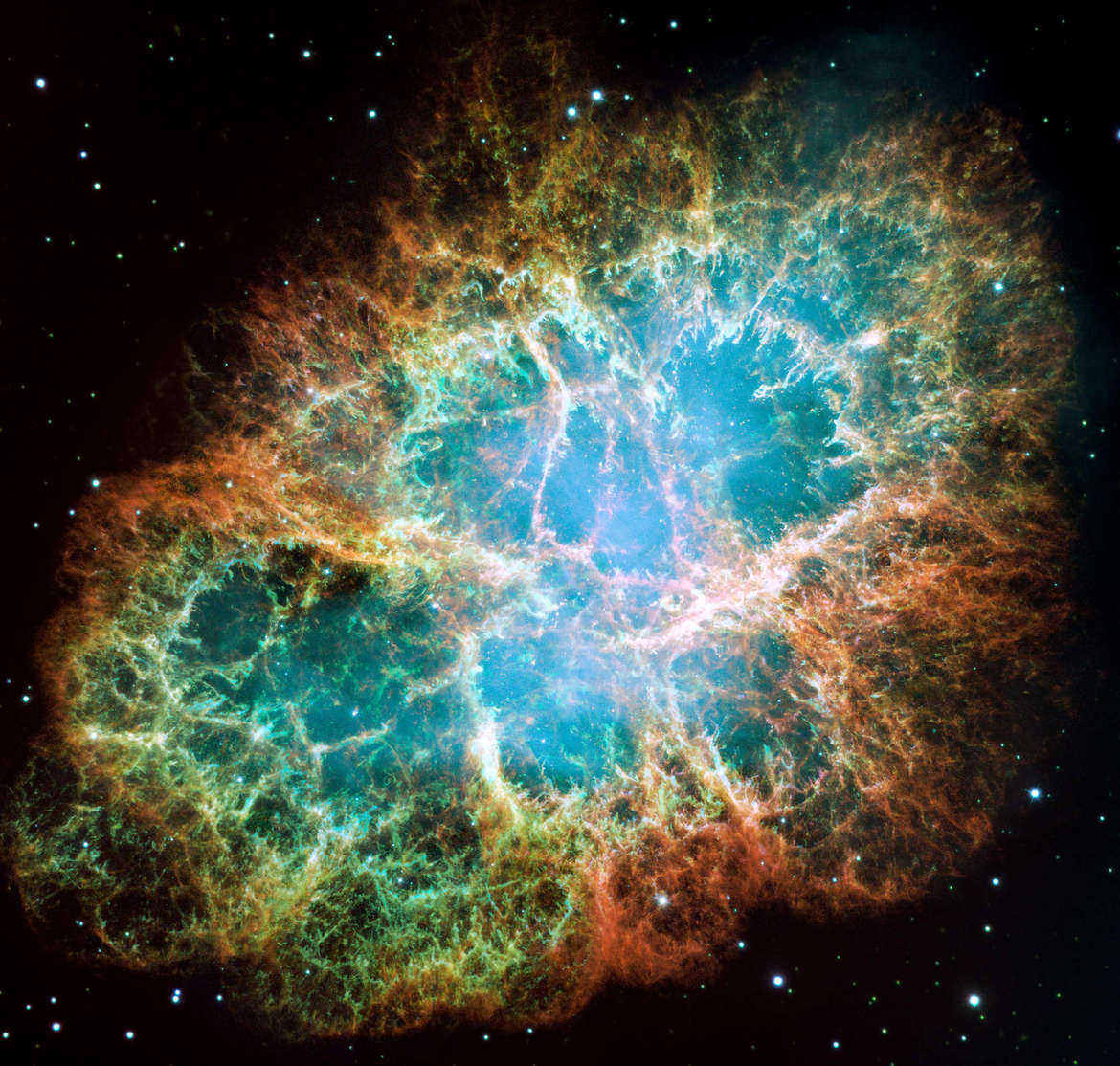 The magnificent Crab Nebula, an expanding cloud of debris from a supernova. Credit:  NASA,ESA, J. Hester and A. Loll (Arizona State University)