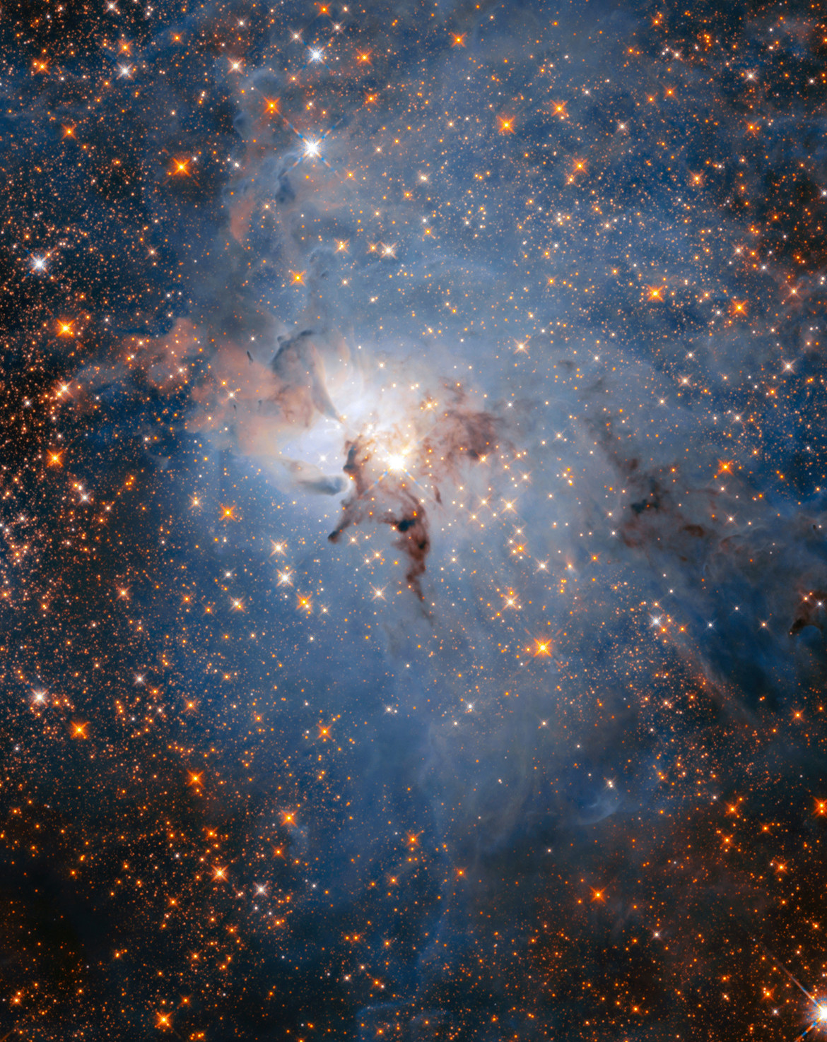 In the infrared, light from more distant background stars can poke through the Lagoon Nebula, which can barely be seen as wisps of dust in this Hubble Space Telescope image. Credit: NASA, ESA, STScI