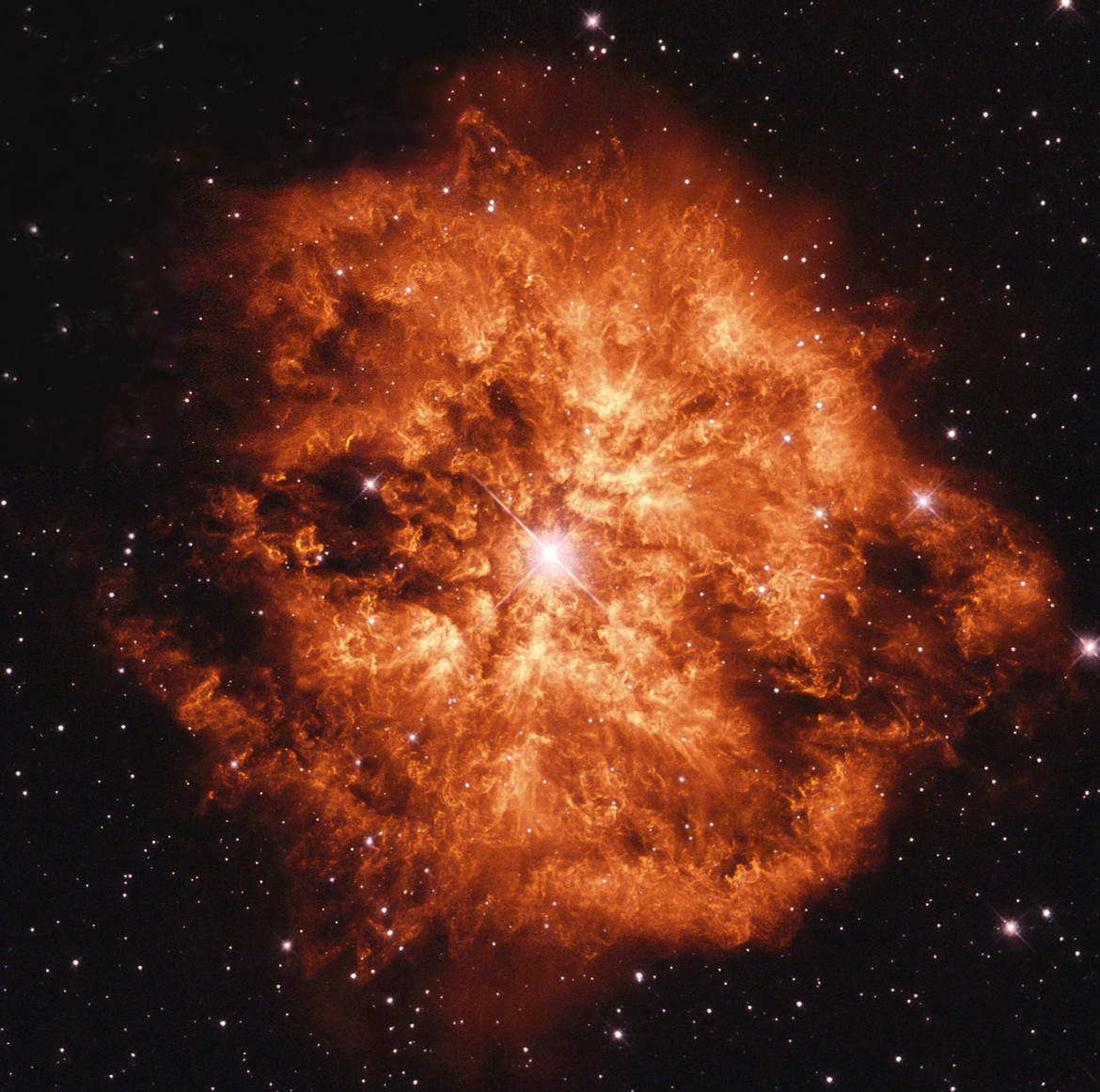 The huge nebula M1-67 around the Wolf-Rayet star WR124. Credit: ESA/Hubble & NASA / Judy Schmidt