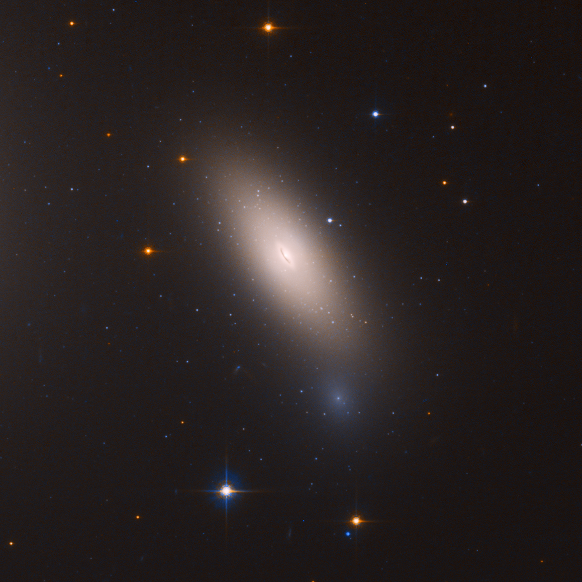 NGC 1277 is a galaxy that appears, despite its size, to have remained unchanged since it formed billions of years ago. Almost all the little fuzzies you see in the image are globular clusters.