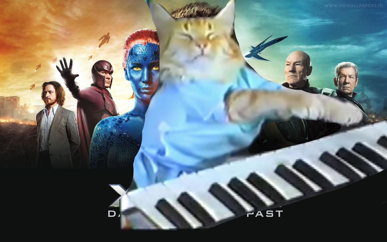 jack-cat