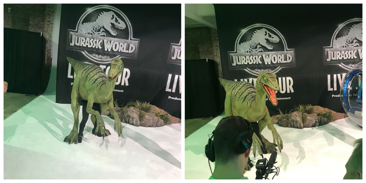 Jeanie the Troodon at Jurassic World Live event