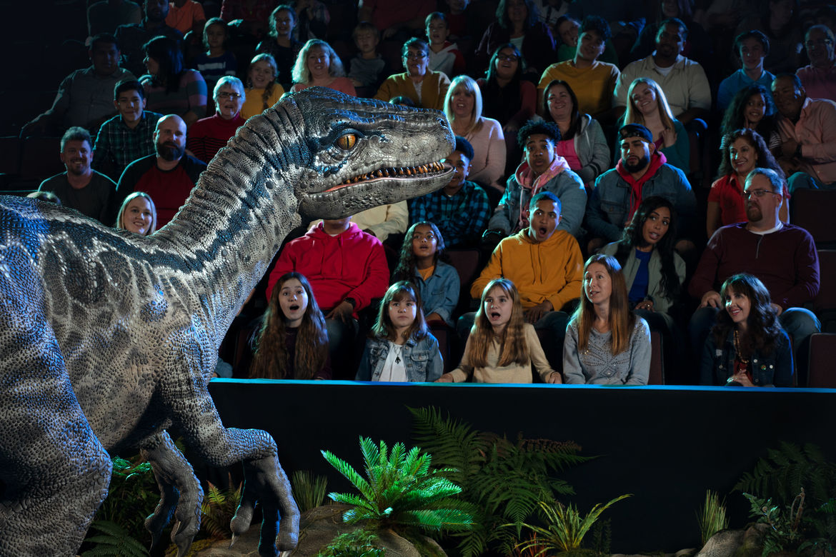 Jurassic World Live Tour - Blue beholds her audience
