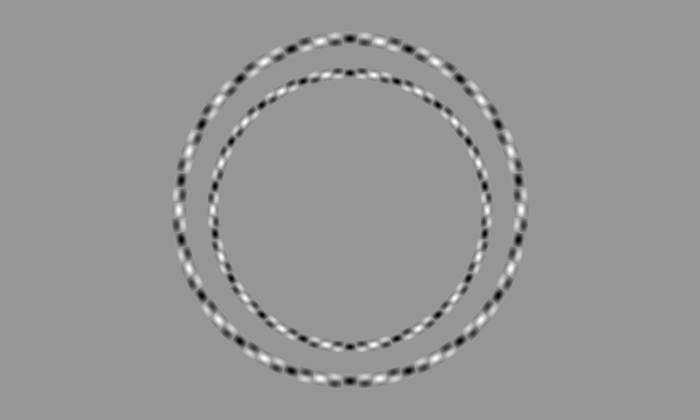 These are two concentric circles. Seriously!