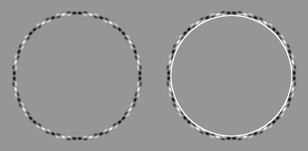 A side-by-side comparison with circles drawn over the illusion reveals they truly are concentric circles.