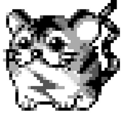 Pokemon - Kotora