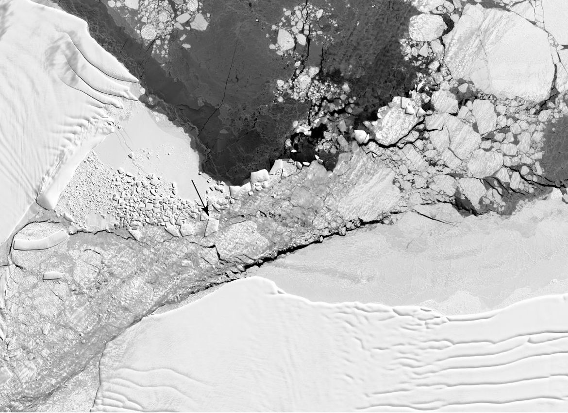 From space, the Landsat 8 satellite shows the trapezoidal iceberg (arrowed) in context with other bergs in the region. Credit: NASA/ Christopher Shuman