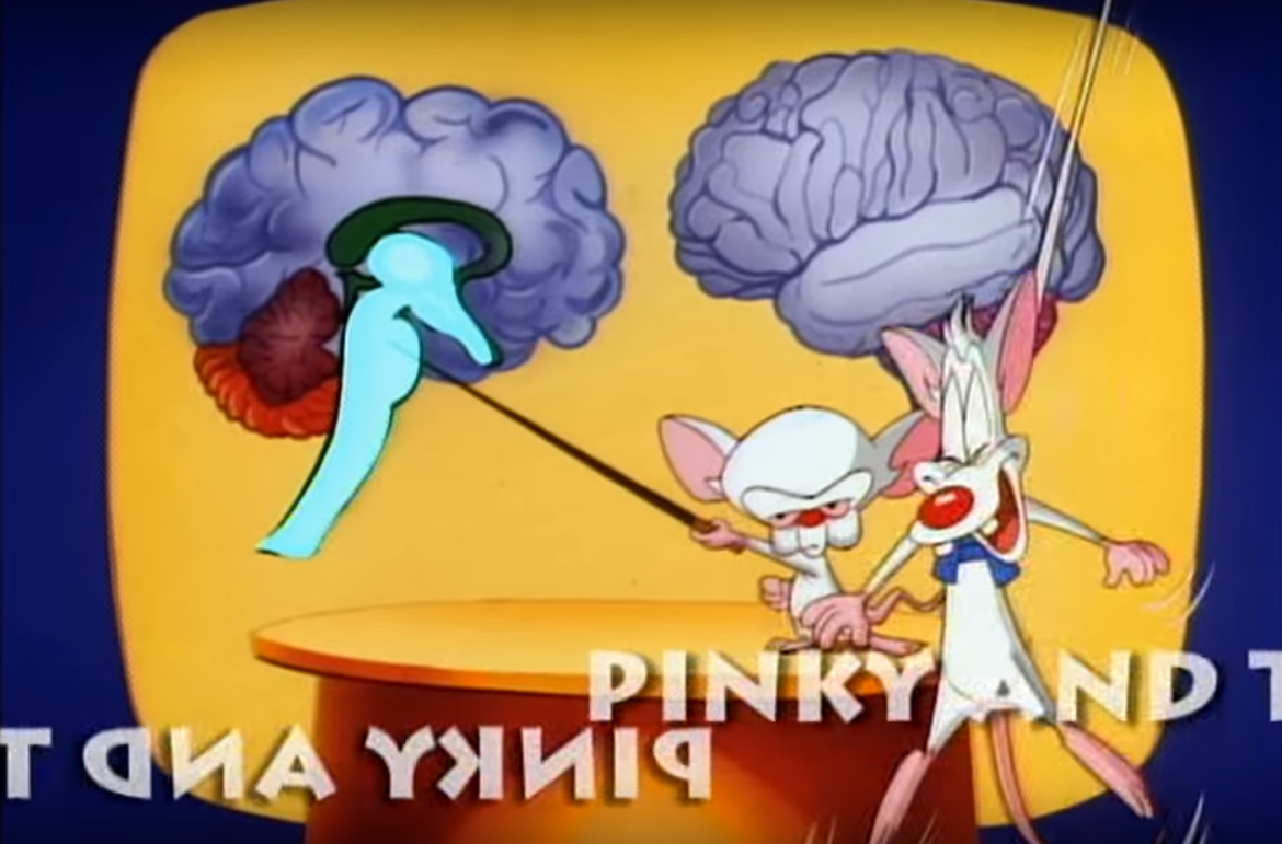 Pinky and the Brain screengrab SYFYWIRE