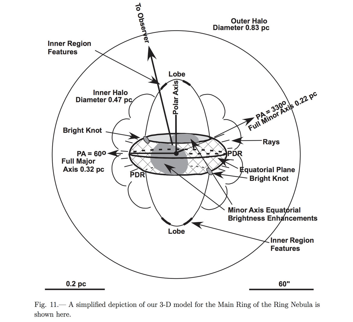 This is a schematic showing one of the models of how the Ring Nebula must really be shaped. What we think of as the ring itself is just a short, barrel-shaped structure in the middle of a larger cloud, and we're looking down the barrel. The caption made m