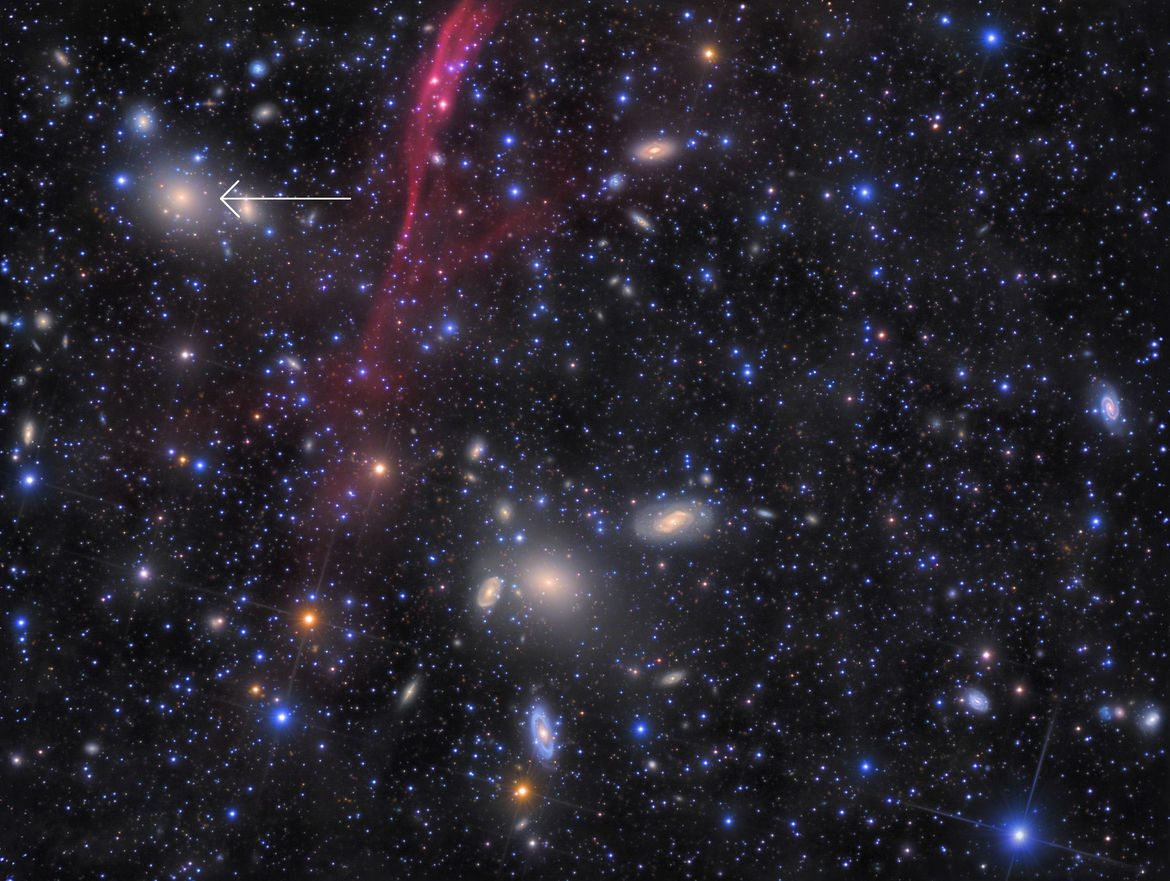 A very deep image of the Antlia Cluster reveals dozens of galaxies, including the elliptical NGC 3258 (arrowed). The red ribbon is gas from a nearby supernova, coincidentally superposed on the field. Credit: Rolf Olsen