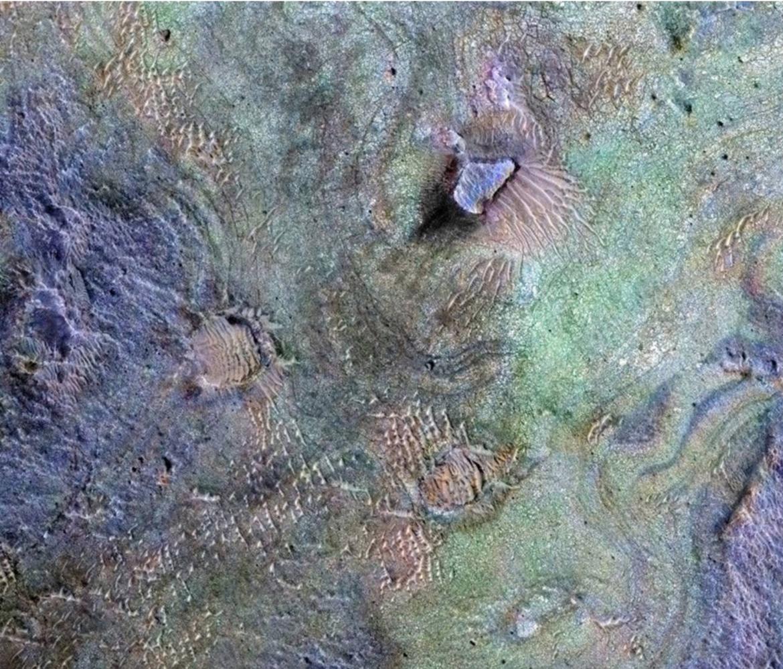 NASA image of Nili Fossae region of Mars
