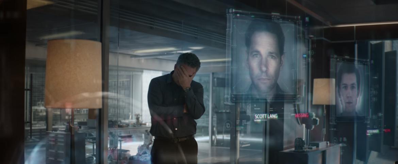 Bruce Banner, Avengers: Endgame