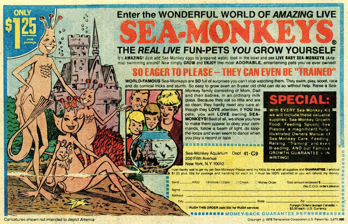 sea-monkeys_advert_4.jpg