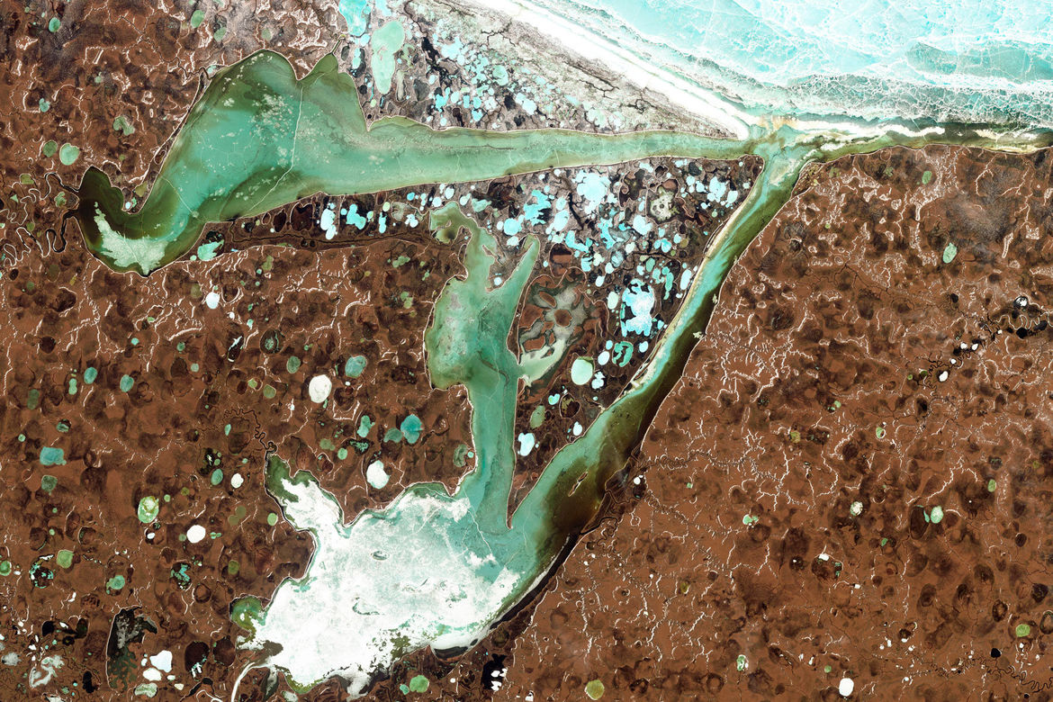 In northern Siberia, lakes are scattered around Omulyakhskaya (top) and Khromskaya (bottom) Bays. Melting permafrost supplies water to the lakes, which are also the sites of methane release. Credit: NASA Earth Observatory / Jesse Allen and Robert Simmon