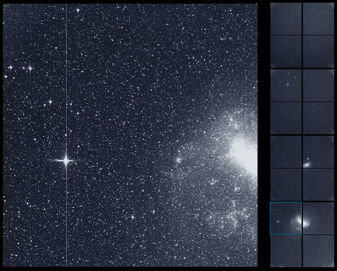 First light image from just one detector from one camera on board TESS, showing a part of the Large Magellanic Cloud (right) and thousands of stars, including the bright star R Doradus (left). Credit: NASA/MIT/TESS