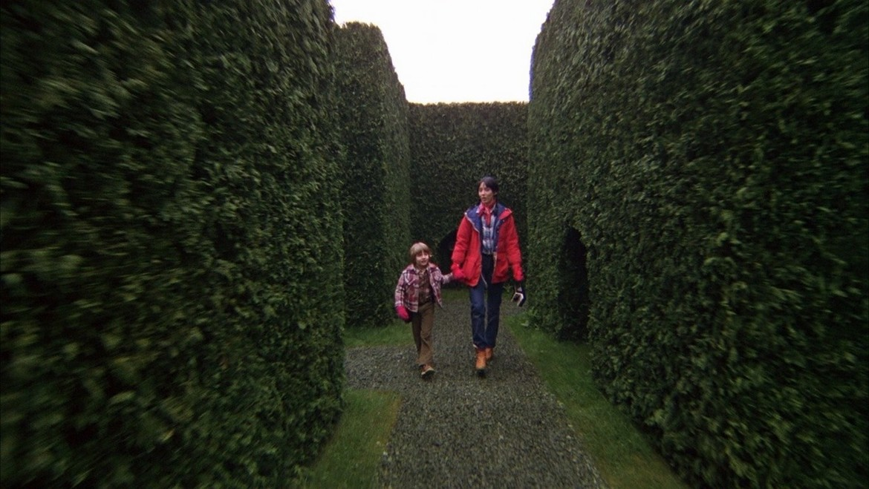 the-shining-hedge-maze