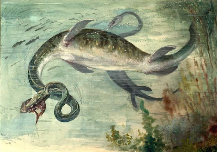 monsters, Elasmosaurus