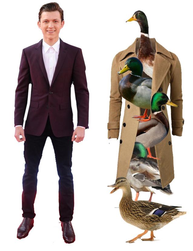 top and ducks.jpg