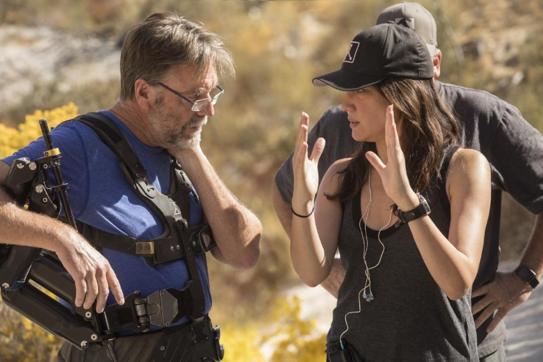 Westworld director Lisa Joy