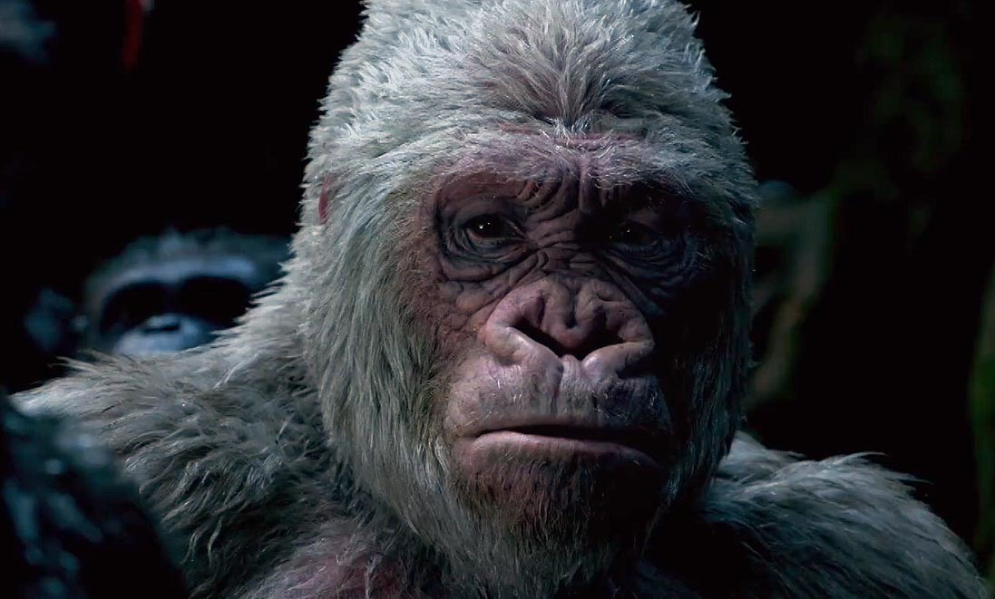 war_for_the_planet_of_the_apes_winter_01.jpg
