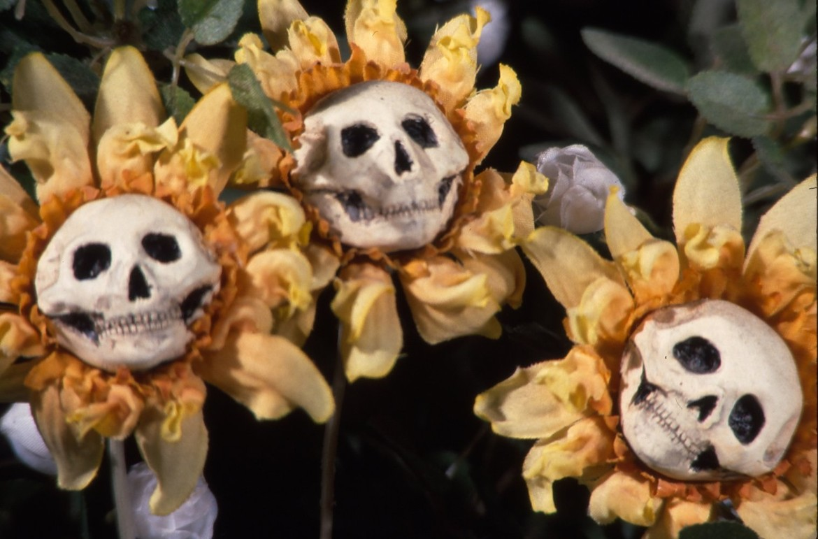 Blood_Tea_Skull_Flowers.jpg