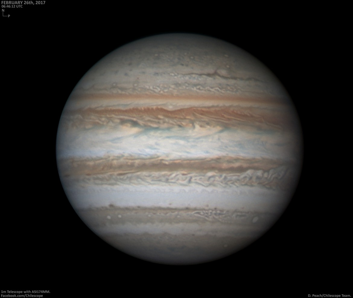 Jupiter imaged by Damian Peach