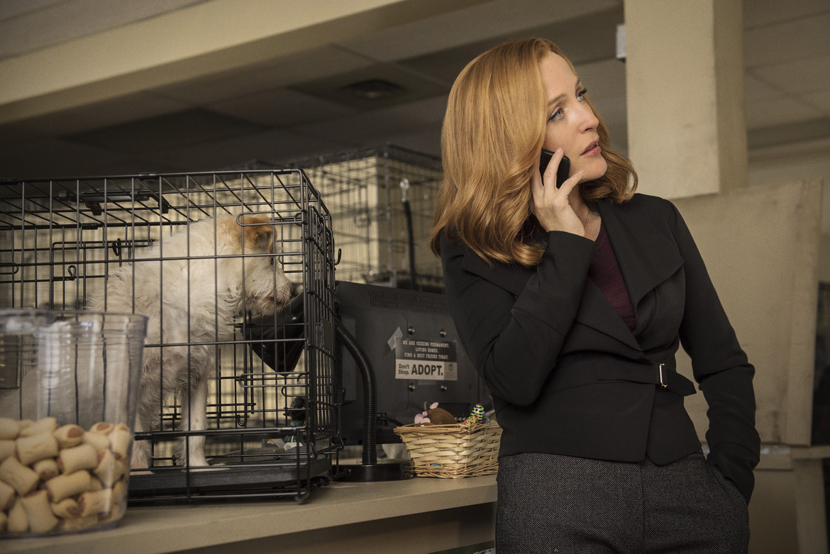 X-Files season 10 - Mulder and Scully meet the Were-Monster - Scully with Dagoo the dog