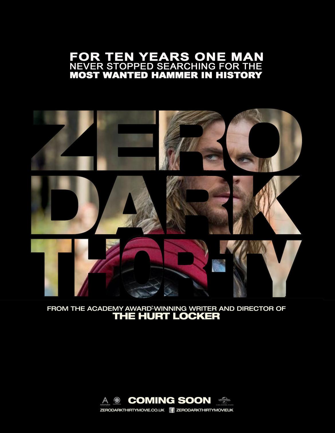 Zero dark thorty.jpg