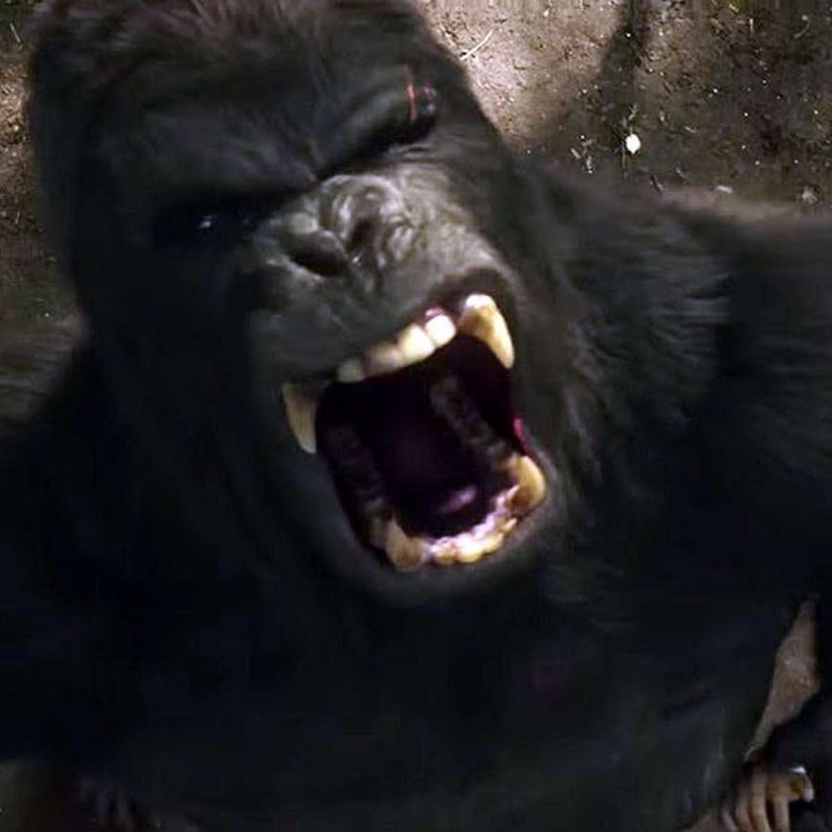 dc_legends_of_tomorrow_gorilla_grodd_01.jpg