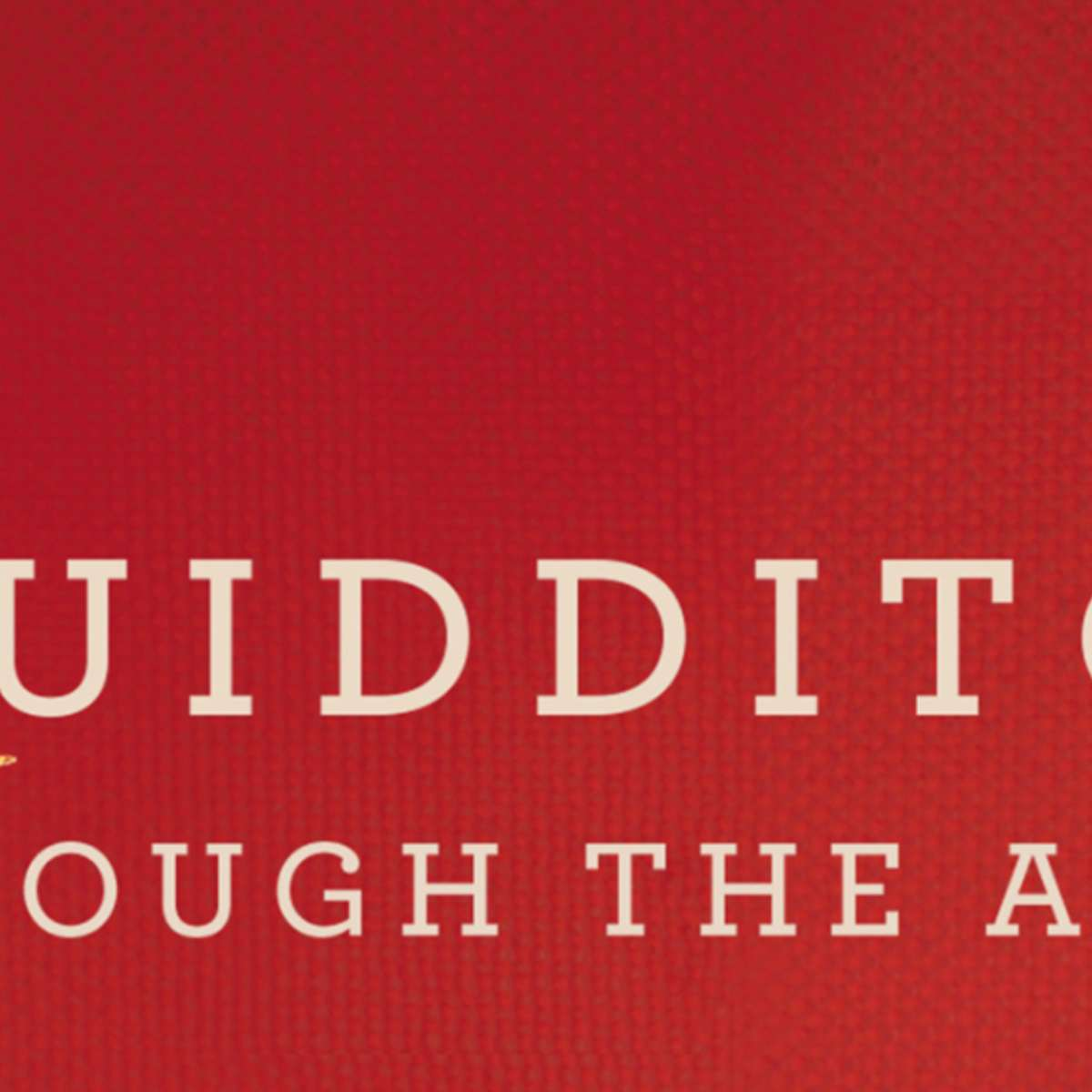 Quidditch-through-the-ages-cover